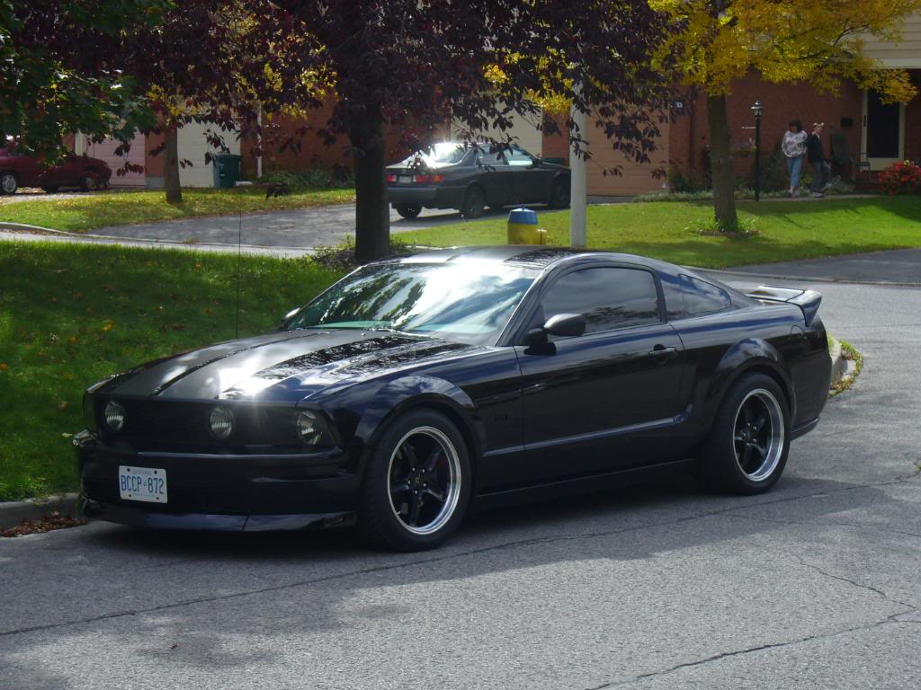 my 2005 mustang gt. Black Bedroom Furniture Sets. Home Design Ideas